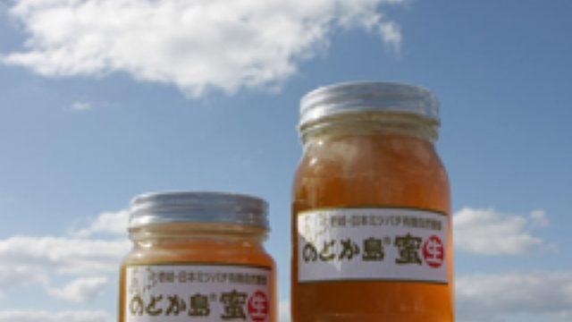 世界一の日本ミツバチで島おこし「和蜂商品・ブランドの開発及び販路開拓」