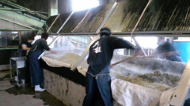 インド型米と国産米を交配した壱岐産新品種米を使った壱岐麦焼酎の開発・販売