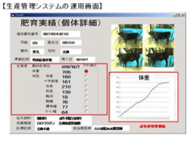 3次元画像を用いた牛の体型・体重測定による生産管理システムの開発