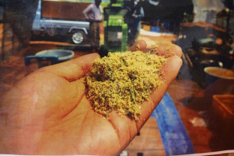 未利用資源である竹に地域特産品の彼杵茶の未活用部分を混ぜた有機肥料の製造とそれを使用した農作物の直売事業による自然循環型農業ビジネスモデルの展開