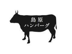 100%島原半島産食材使用ハンバーグの商品開発