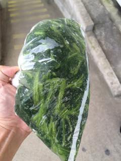 長崎県産馬鈴薯の特性である「調理品質(調理しやすさ)」を活かし、主食でありながら、おかずになる馬鈴薯加工総菜シリーズの開発