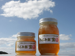 世界一の日本ミツバチで島おこし 「和蜂商品・ブランドの開発及び販路開拓」