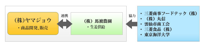 長崎県産あごと島原産生姜を活かした「飲むあごだし」の開発、販路開拓