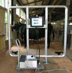 肉用牛生産管理システム
